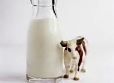 P2: Bạn đã biết gì về sữa thủy phân?